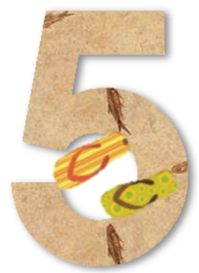 cinc_aracoop
